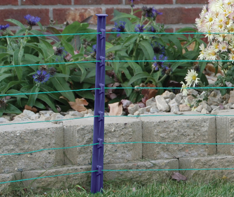 A blue step-in plastic post for a temporary garden fence.